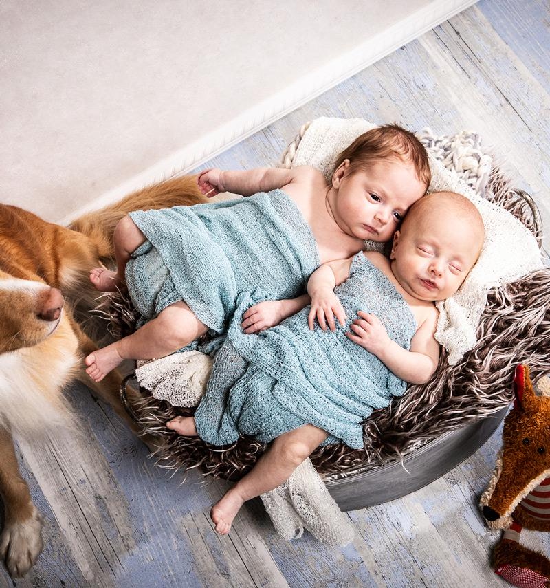 Baby Fotoshooting Geschwister mit Hund - Sabrina's Fotostudio in Hamminkeln, zwischen Wesel und Bocholt am Niederrhein